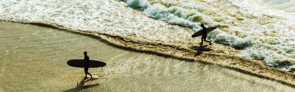 Surfing On Change