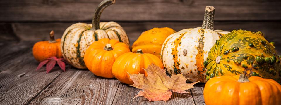 The Alternative To The Halloween Alternative